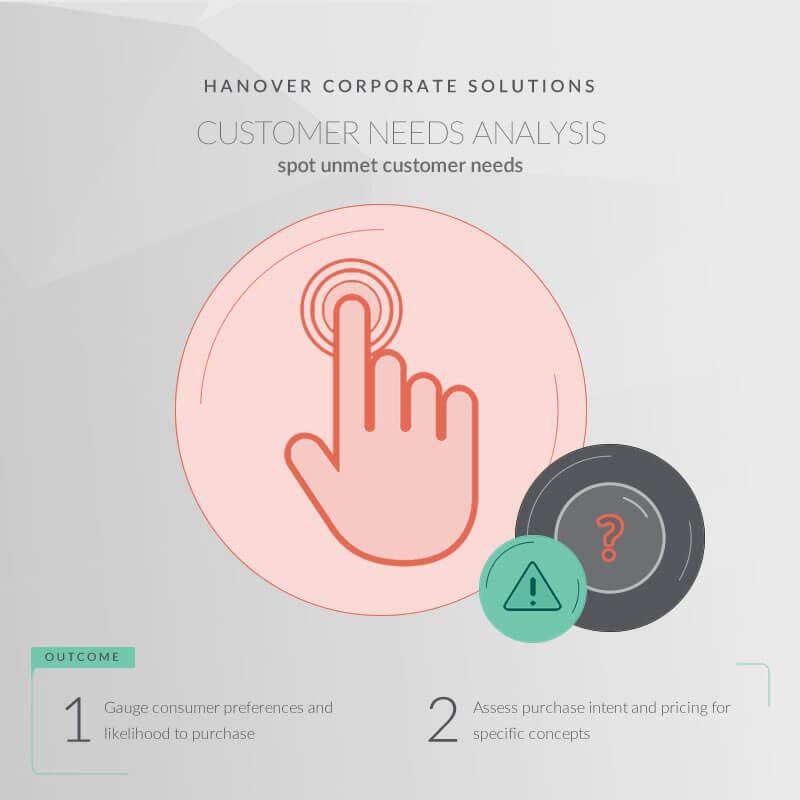 screenshot: Customer Needs Analysis